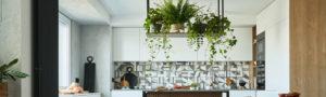 Teyo Diseños: las mejores plantas para cocina