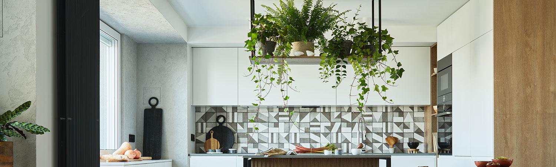 Las mejores plantas para cocina